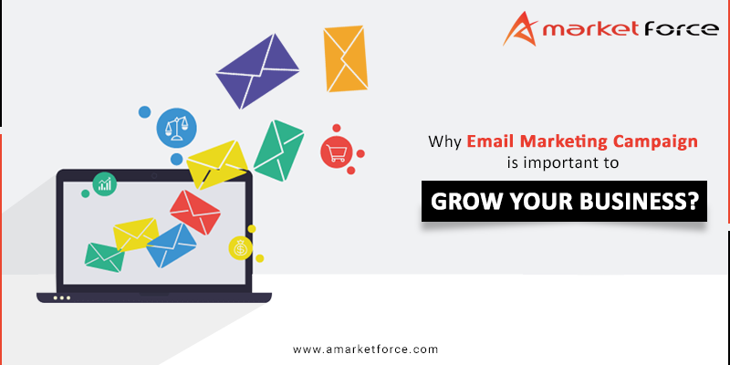 Email Campaign Management Services